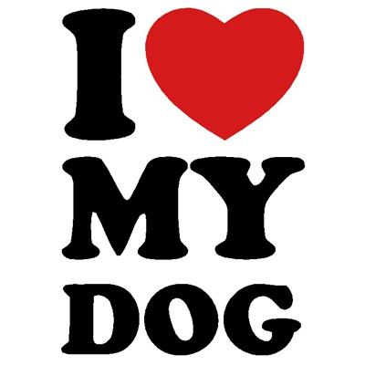 I love my dog - více barev
